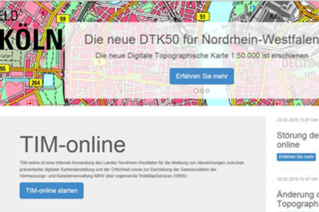 Timm Online