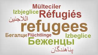 Refugees Information In English Stadt Köln