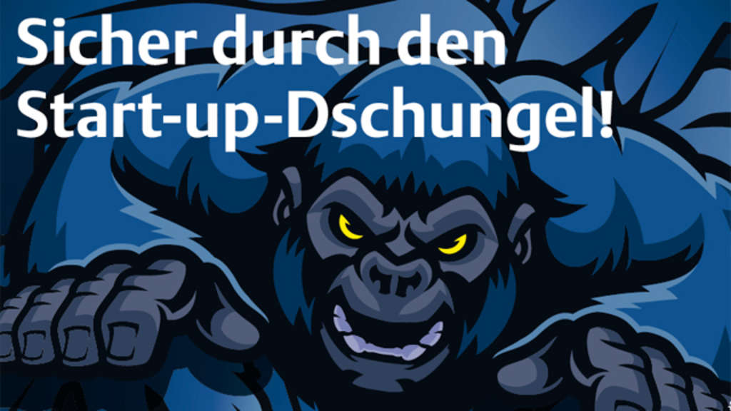 Sicher durch den Start-up-Dschungel