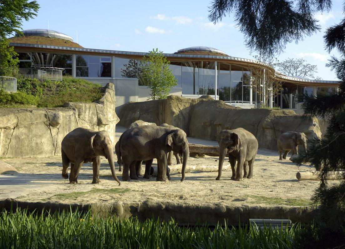 Zoo Köln Restaurant